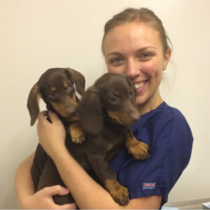 Kirsten – Registered Veterinary Technician